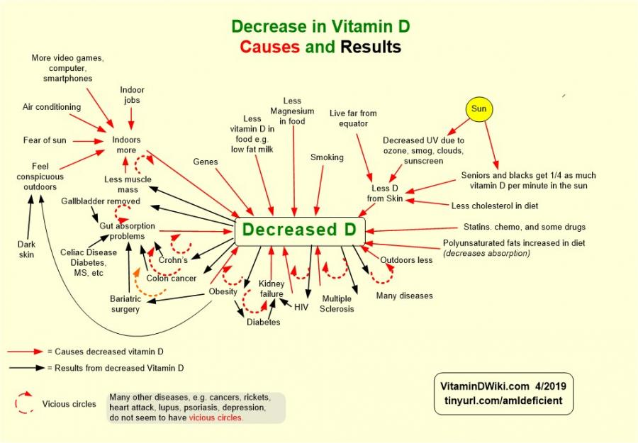 Possible Vitamin D Interactions